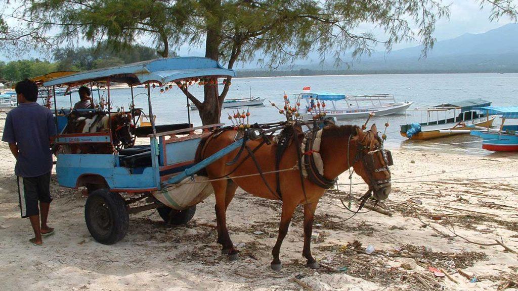 Cidomo Transportasi di Gili Trawangan