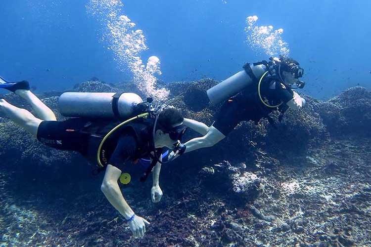 Diving di Pulau Gili